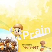 2009년 양양송이 명품 브랜드화